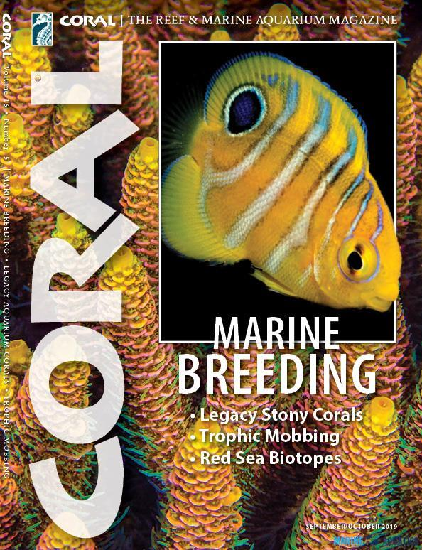 "Časopis CORAL - ""MARINE BREEDING"" (SEP-OCT19)"