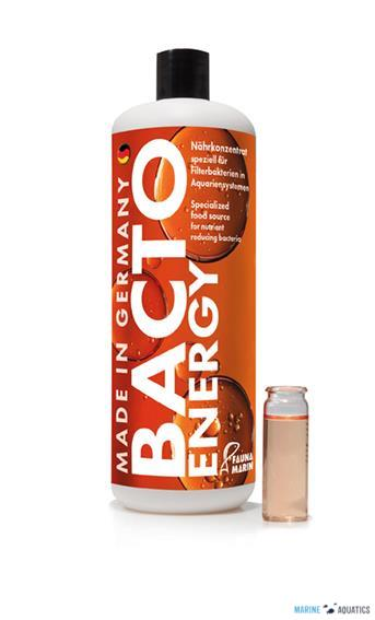 Bacto Energy (250ml)
