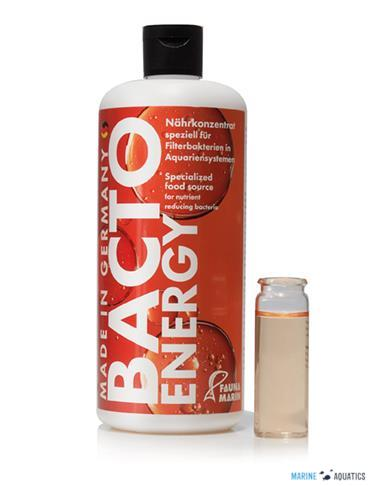 Bacto Energy (500ml)