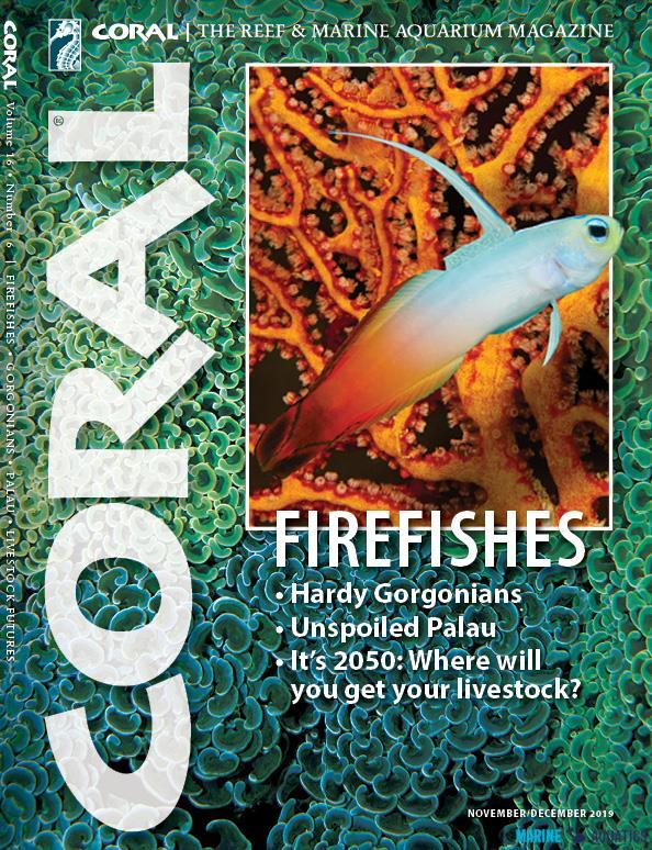 "Časopis CORAL - ""FIREFISHES"" (NOV-DEC19)"