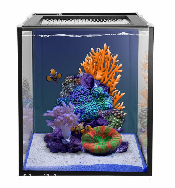Nuvo fusion 10 1caddy filtration return pump 38 liters for Aquarium nano marin