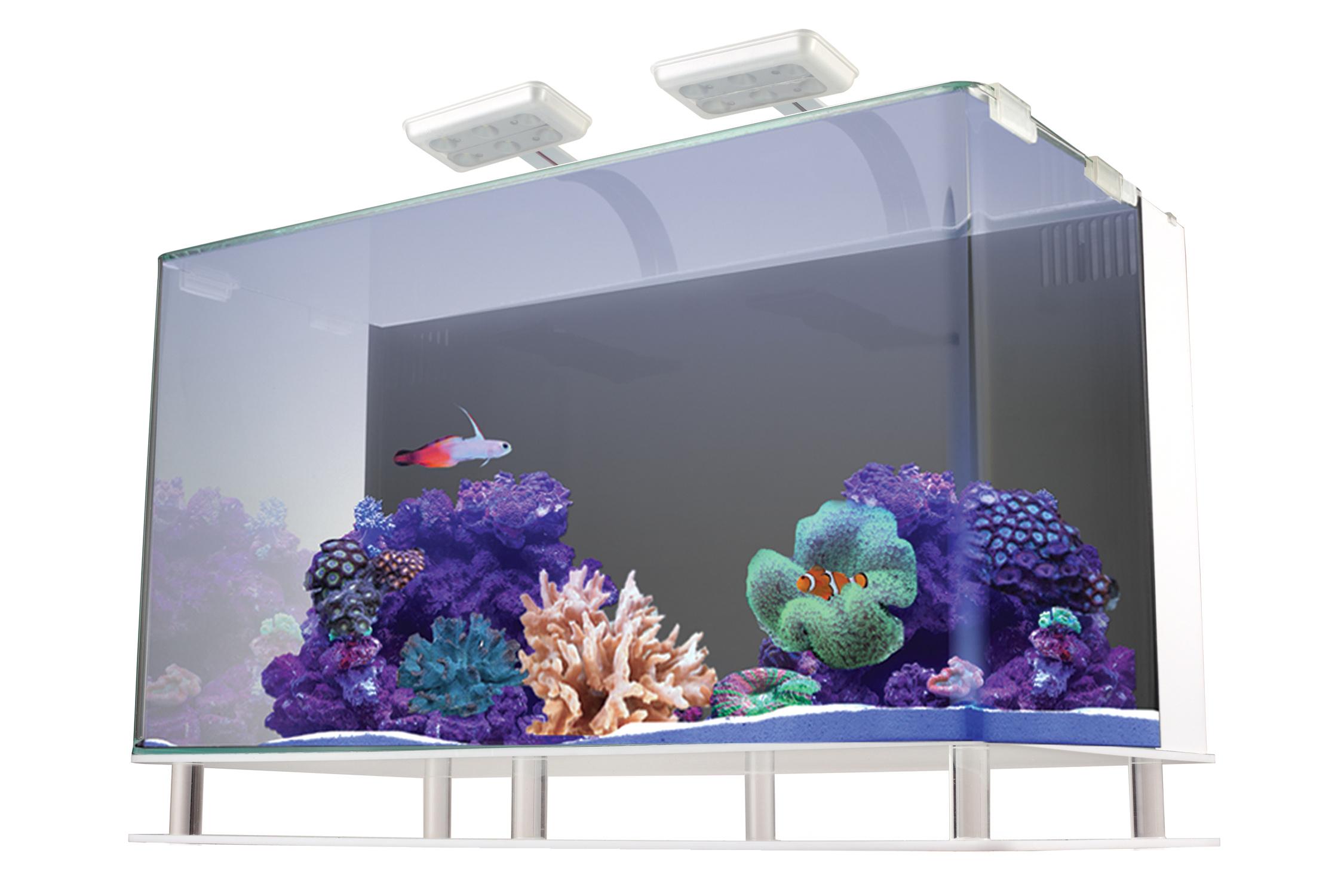 Nuvo Aquarium Sale: Up to 70% Off | Best Discount Price ...
