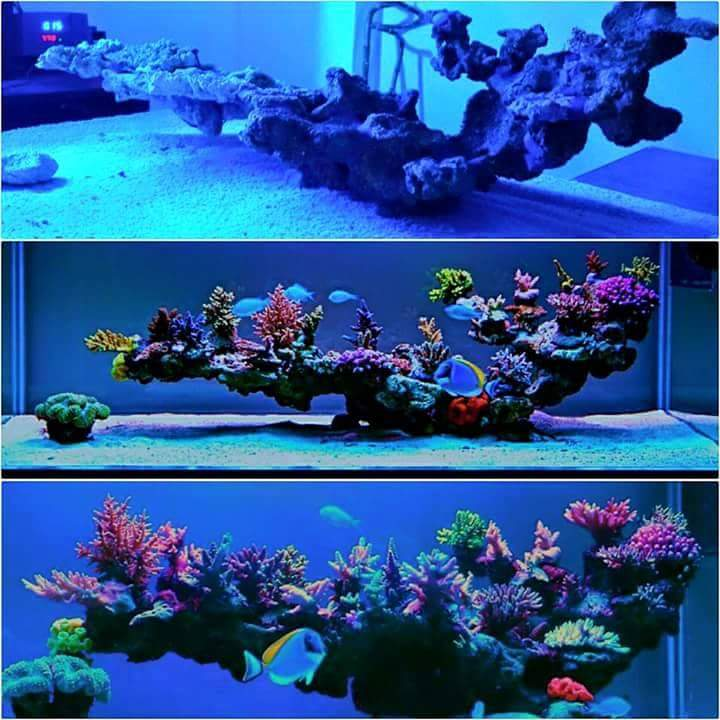 E-MRocks 400 - bond Marco Rocks into amazing aquascapes ...
