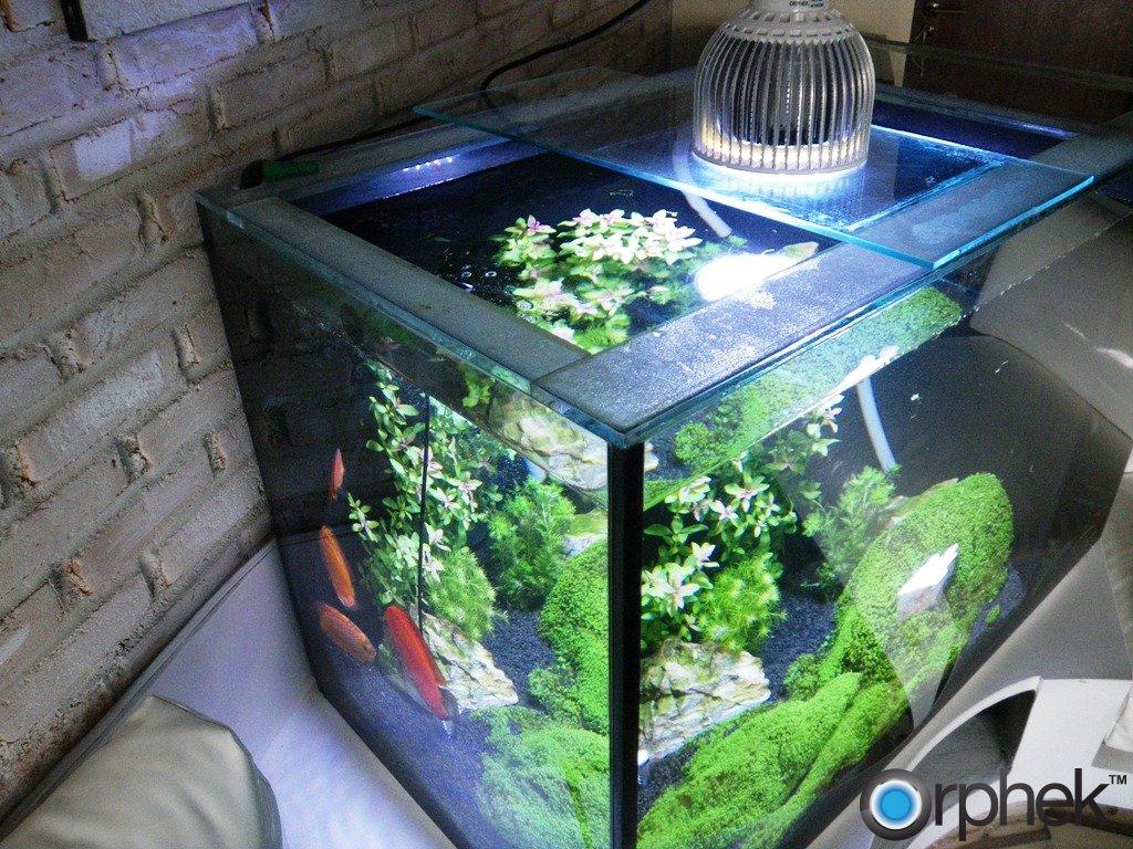 Аквариум светодиодное освещение своими руками для растений
